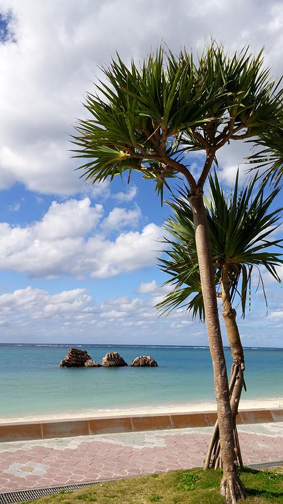 大好きなアラハビーチ