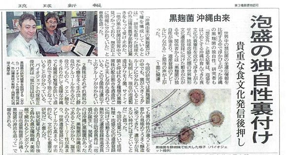 泡盛情報(琉球新報)