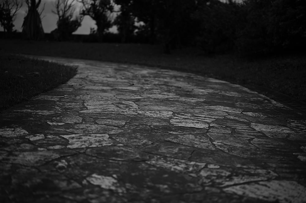 【画像】公園の道