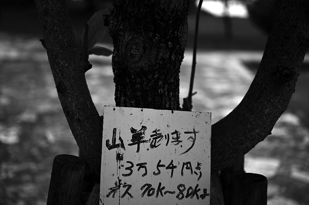 【画像】木の看板